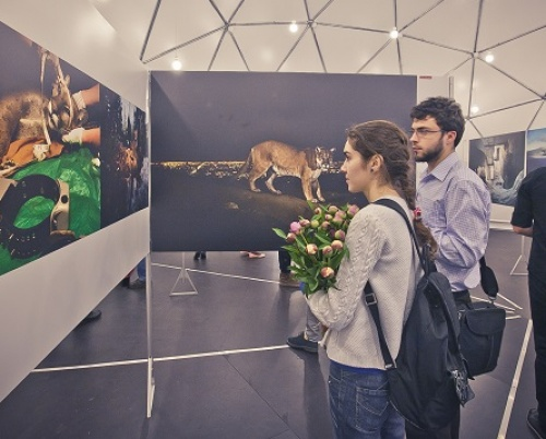 World Press Photo 2015 Exhibition